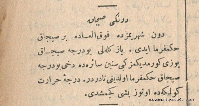 İstanbul Gölgede 35 dereceyi gördü (24 Haziran 1900)